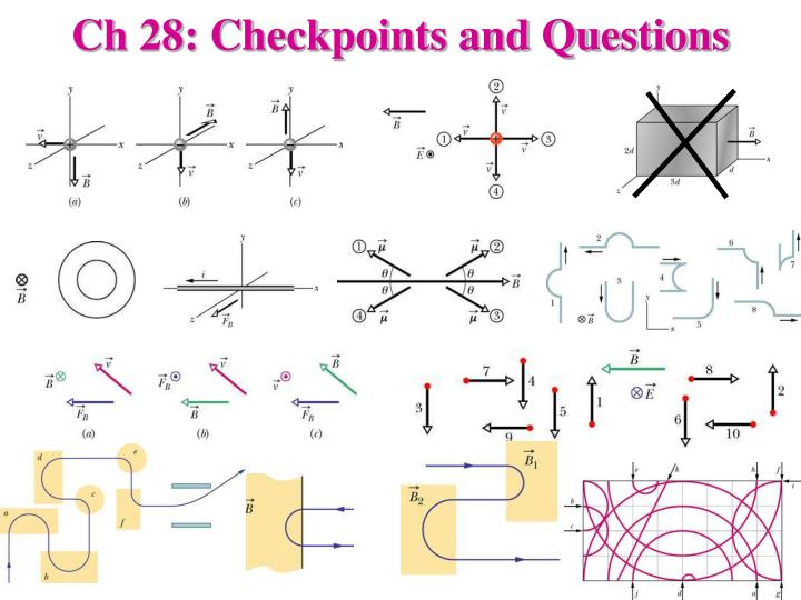 Ch 28: Checkpoints and Questions