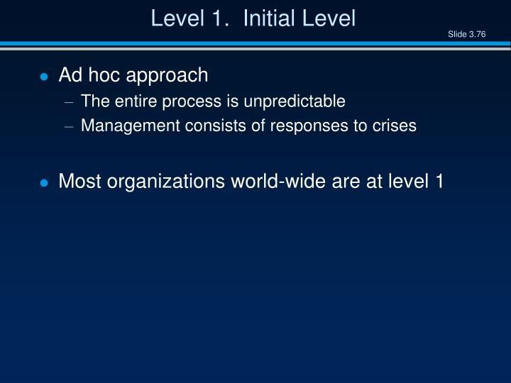 Level 1.  Initial Level
