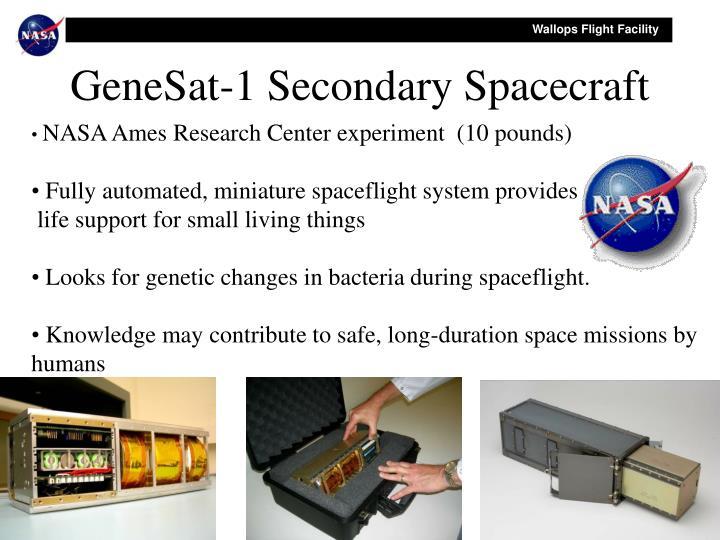 GeneSat-1 Secondary Spacecraft