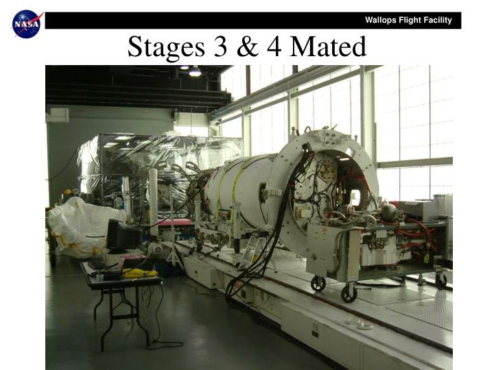 Stages 3 & 4 Mated