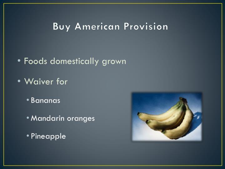 Buy American Provision