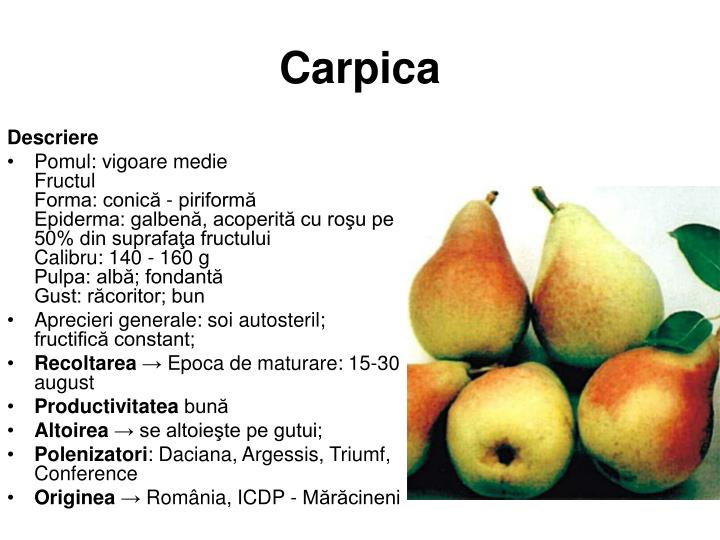 Carpica