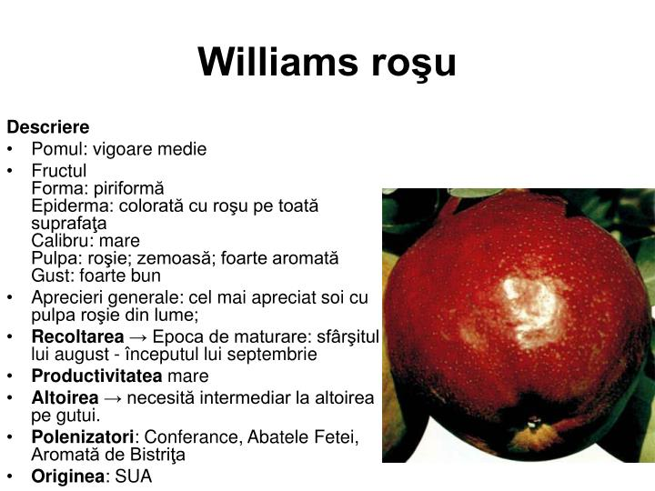 Williams roşu