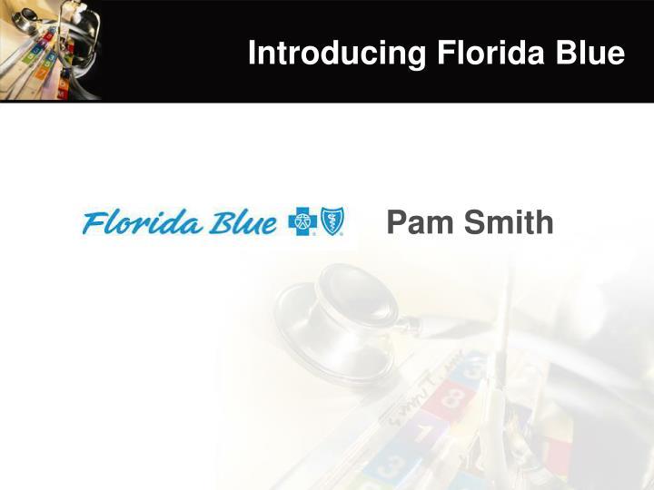 Introducing Florida Blue