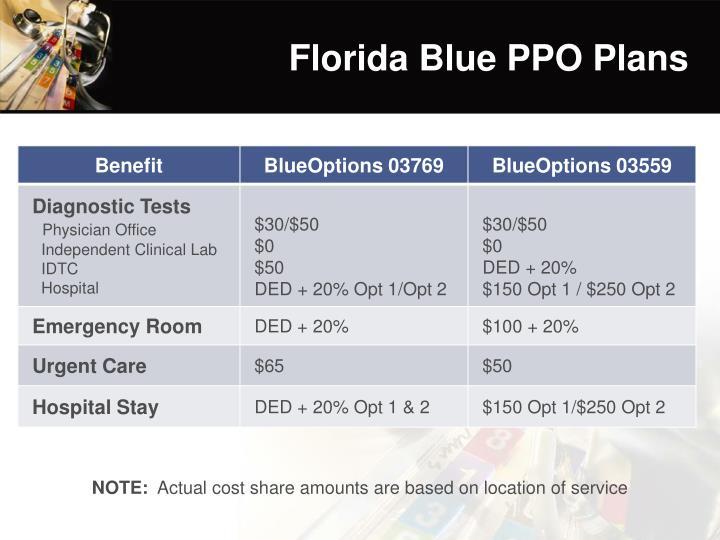 Florida Blue PPO Plans