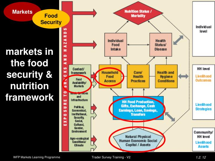 markets in the food security & nutrition framework