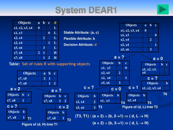 System DEAR1