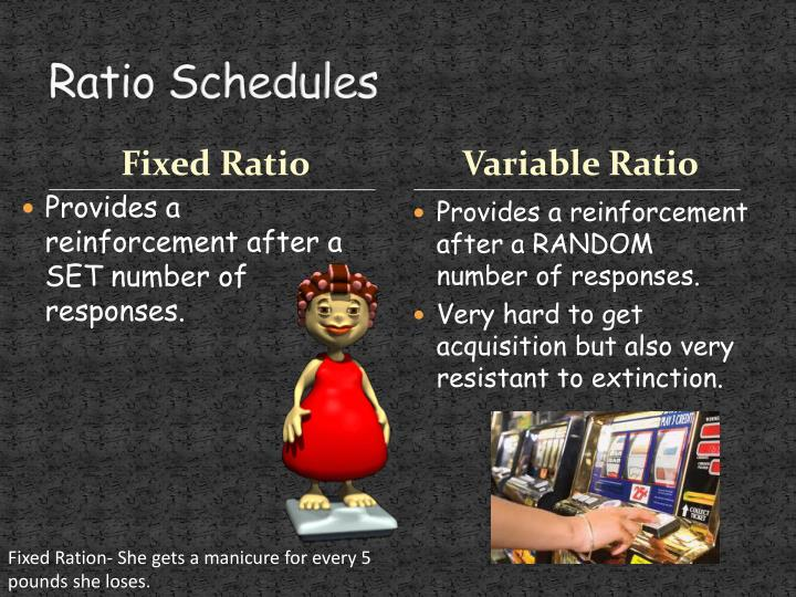 Ratio Schedules