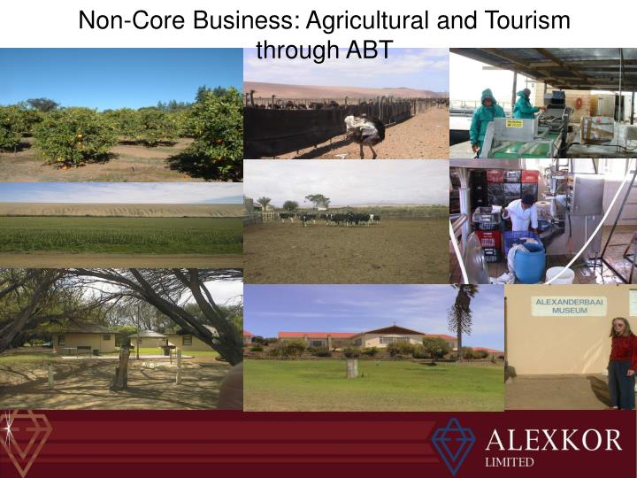 Non-Core Business: Agricultural and Tourism