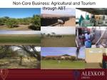non core business agricultural and tourism through abt