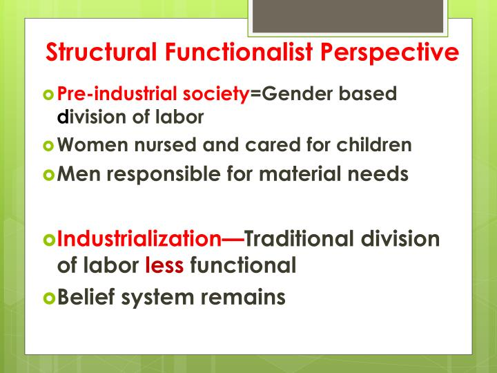 Structural Functionalist Perspective