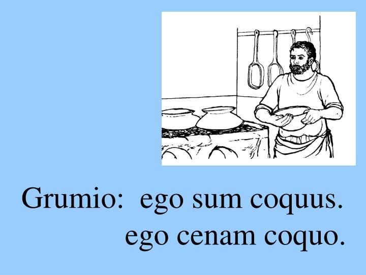 Grumio:  ego sum coquus.