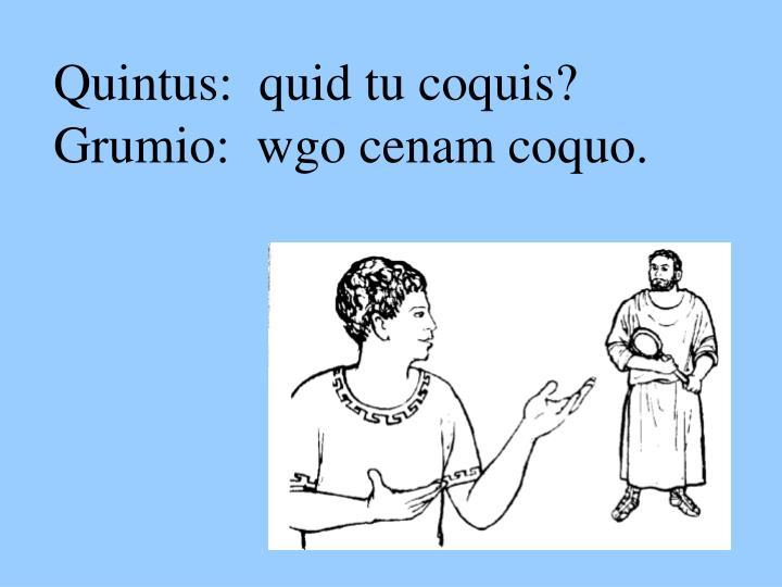 Quintus:  quid tu coquis?
