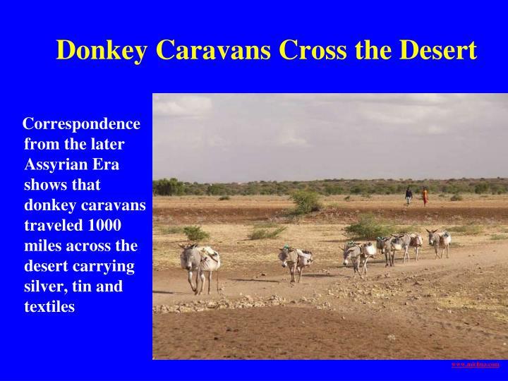 Donkey Caravans Cross the Desert