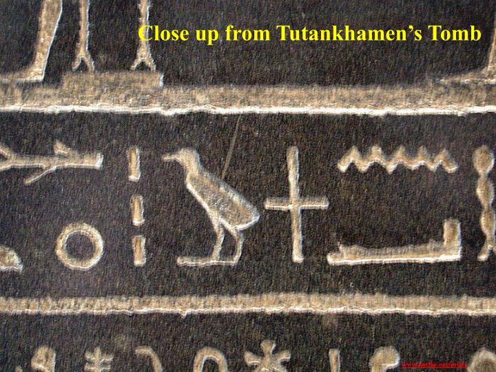 Close up from Tutankhamen's Tomb