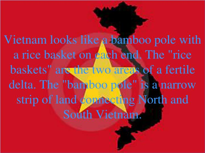 """Vietnam looks like a bamboo pole with a rice basket on each end. The """"rice baskets"""" are the two areas of a fertile delta. The """"bamboo"""
