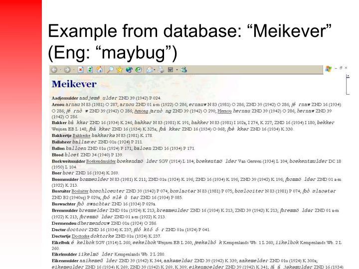 """Example from database: """"Meikever"""" (Eng: """"maybug"""")"""