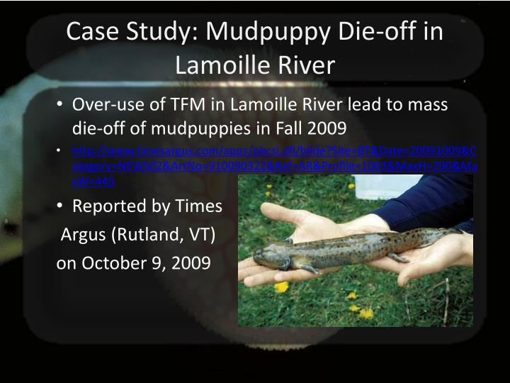 Case Study: Mudpuppy Die-off in Lamoille River