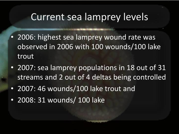 Current sea lamprey levels