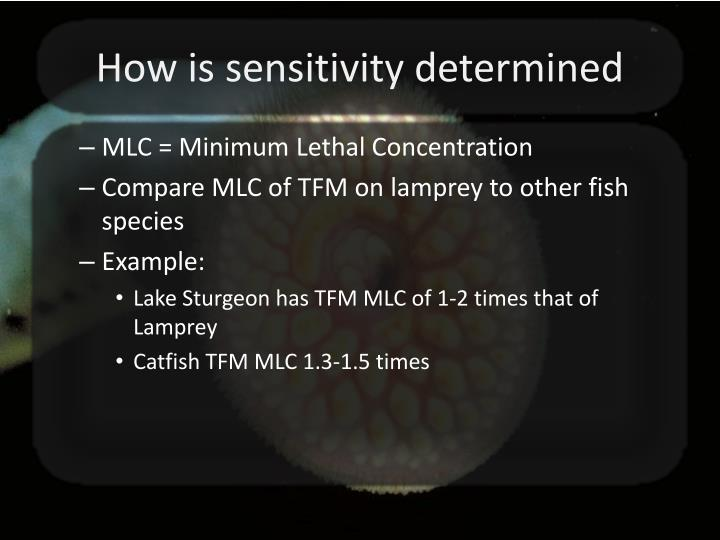 How is sensitivity determined