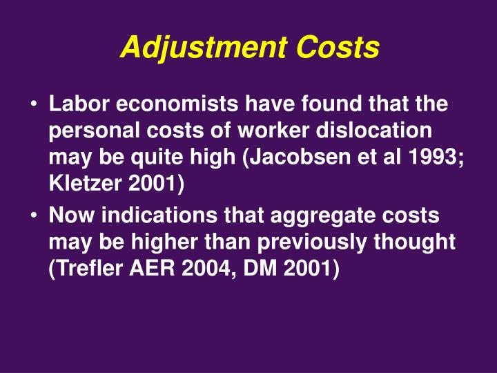 Adjustment Costs