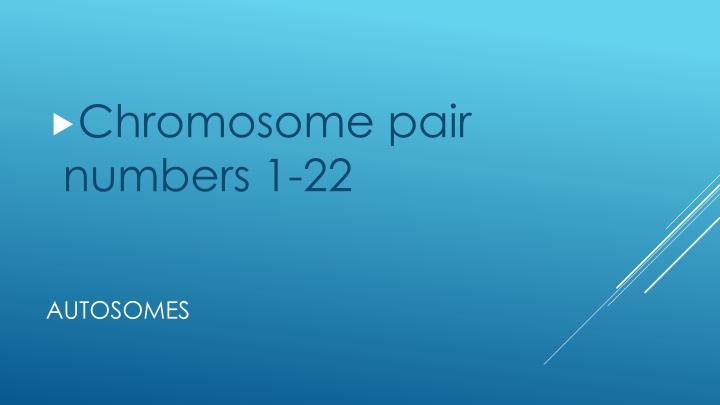 Chromosome pair numbers 1-22