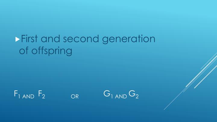 First and second generation of offspring