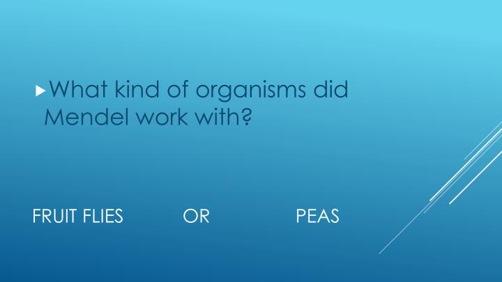 What kind of organisms did Mendel work with?