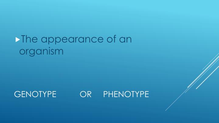 The appearance of an organism