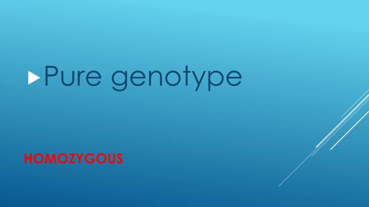 Pure genotype