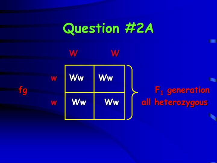 Question #2A