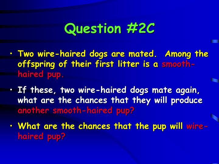 Question #2C