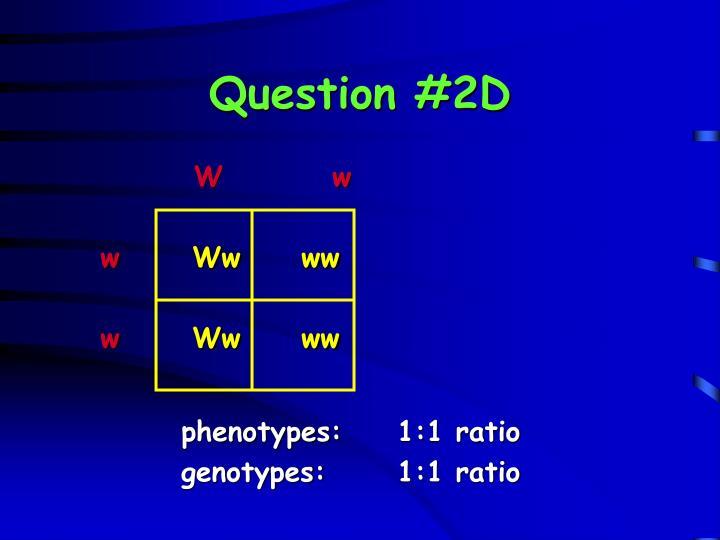 Question #2D