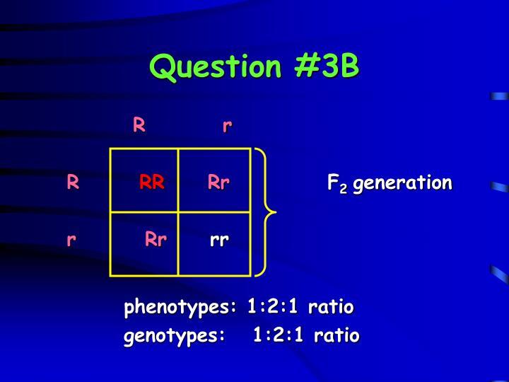 Question #3B