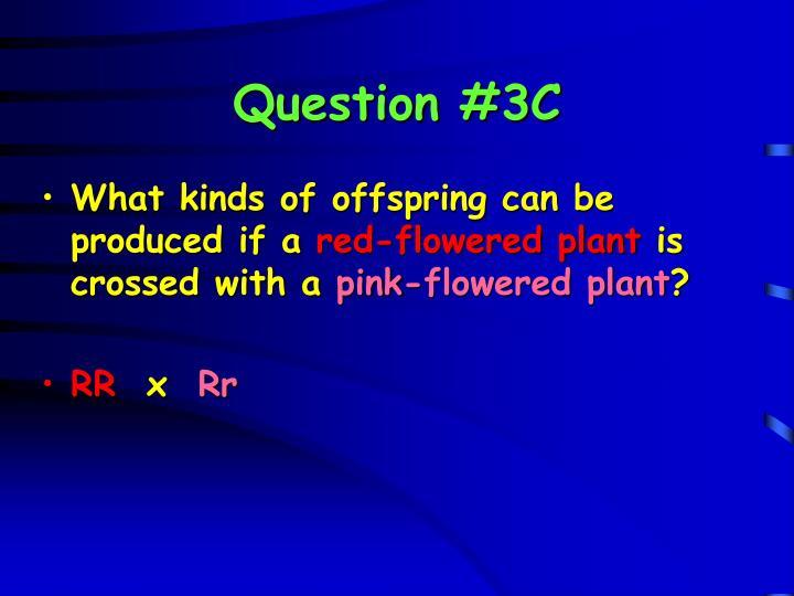 Question #3C