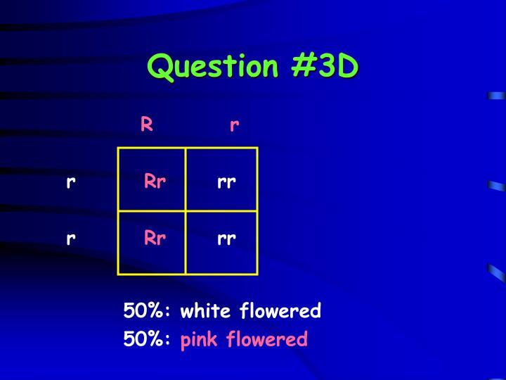 Question #3D