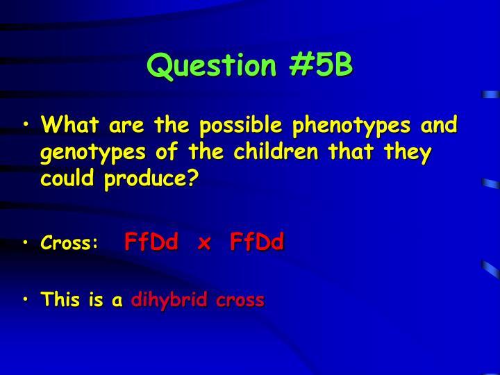 Question #5B