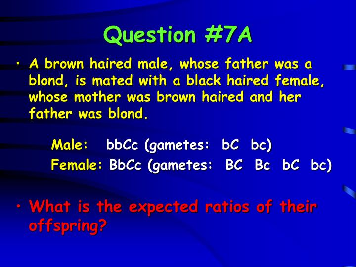 Question #7A