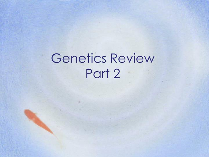 Genetics review part 2