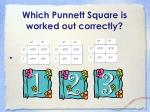 which punnett square is worked out correctly