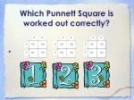 which punnett square is worked out correctly1