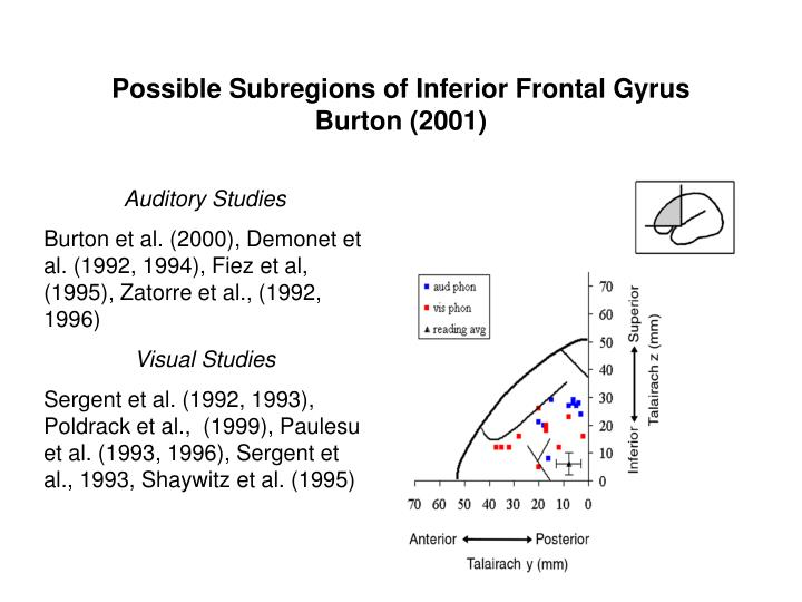 Possible Subregions of Inferior Frontal Gyrus