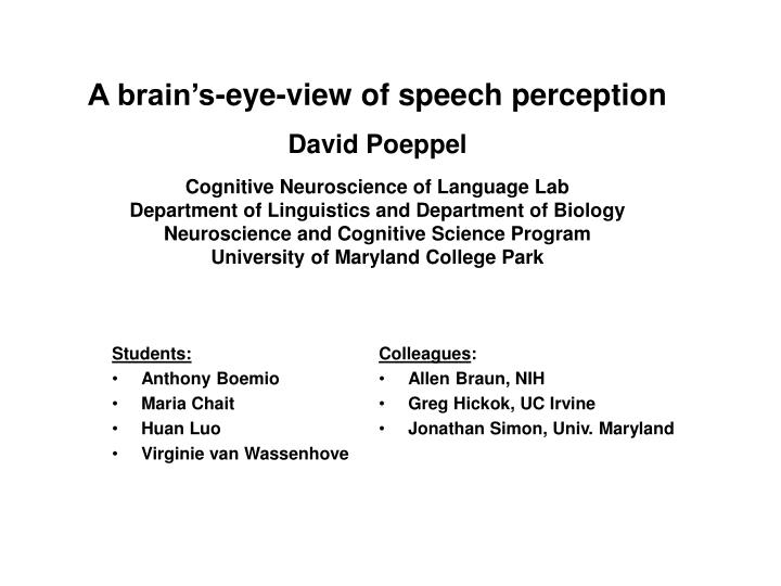 A brain's-eye-view of speech perception