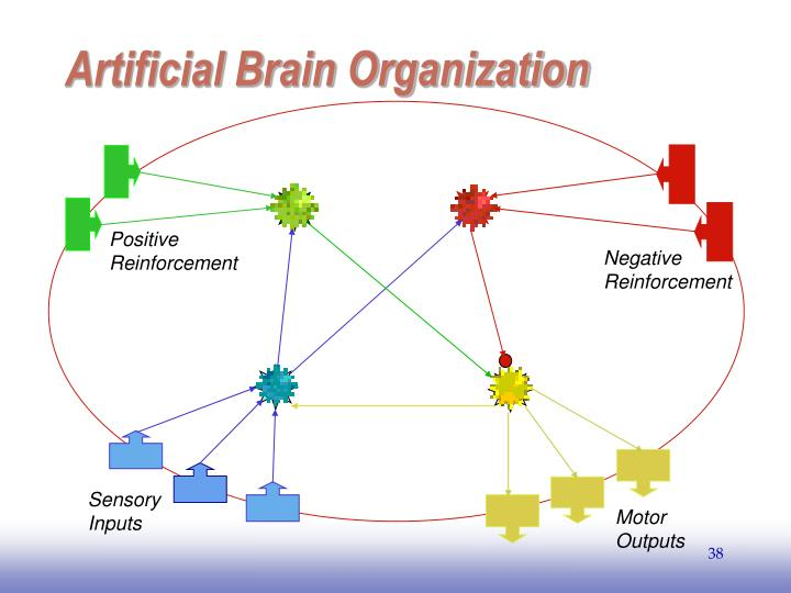 Artificial Brain Organization