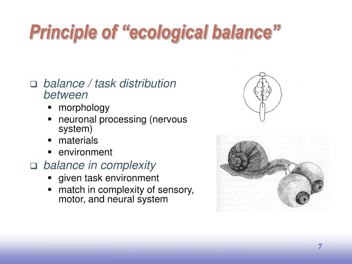 "Principle of ""ecological balance"""