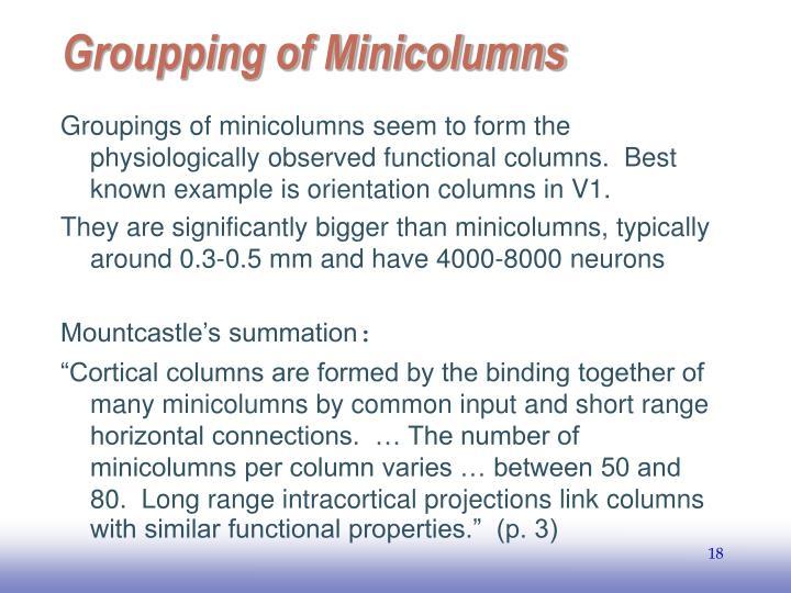 Groupping of Minicolumns