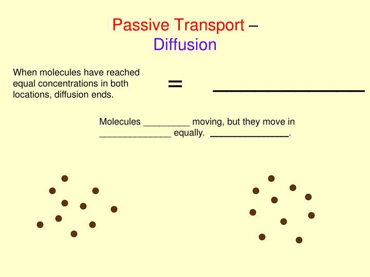 Passive Transport