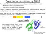 co activator recruitment by arnt