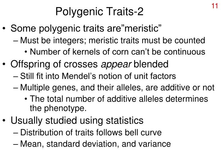 Polygenic Traits-2