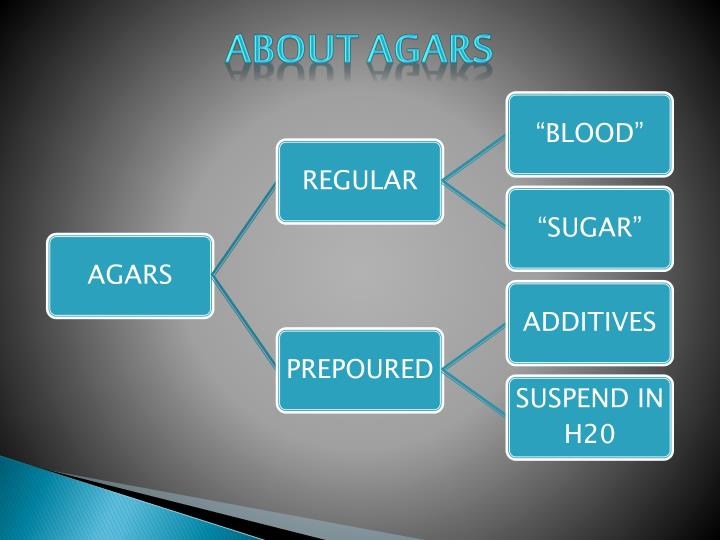 ABOUT AGARS